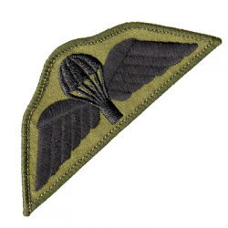 Para Wings Patch