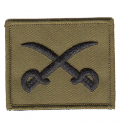 PTI Instructor Patch Olive
