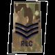 RLC MTP Rank Slide