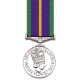 Accumulated Service Miniature Medal
