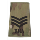 Royal Horse Artillery Multicam Rank Slide