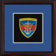 Joint Force Command Framed Badge