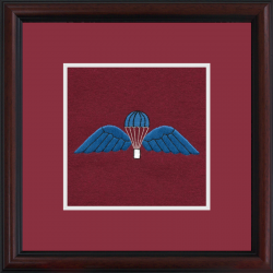 Para Wings Framed Badge