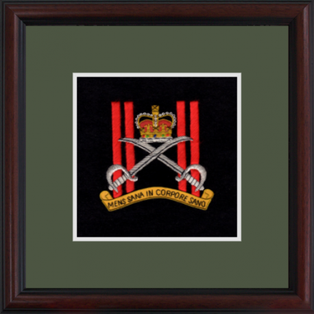 Army Physical Training Corps Framed Badge