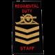 Regimental Duty Staff Rank Slide