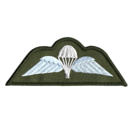Para Wings Patch Olive