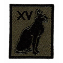 15th Signal Regiment (Information Support)