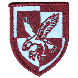 16 Air Assault Brigade Flash Coloured