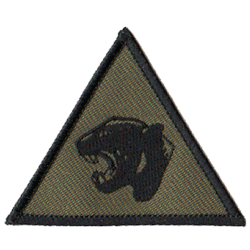 19 Mechanised Brigade Patch
